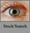 Stock/Search
